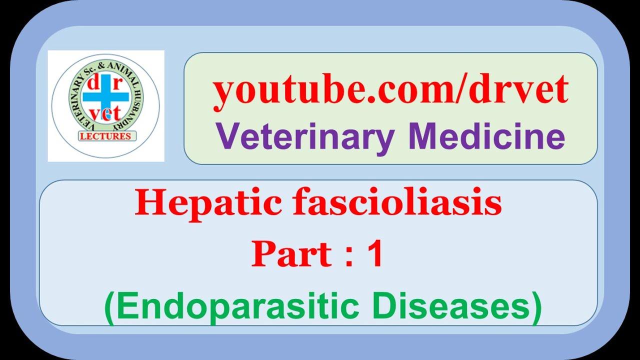 a fascioliasis patogenezisében papilloma vs papilloma