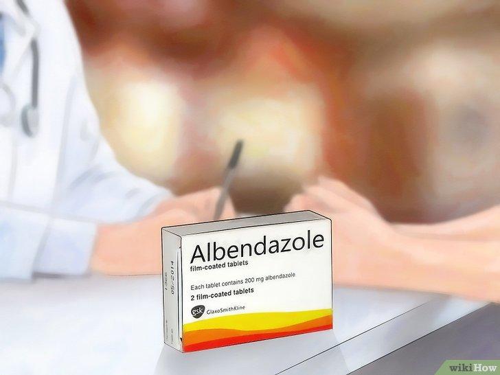 giardia gyógyszer az emberek számára