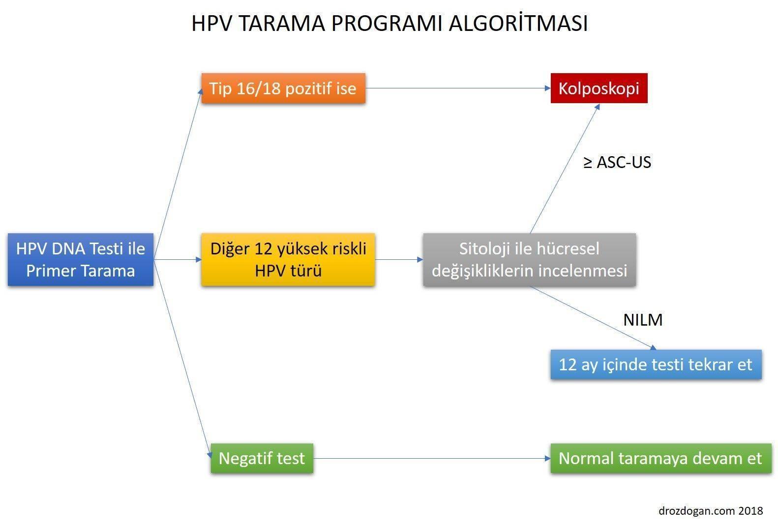 Human papillomavirus tunetei - jazzpub.hu