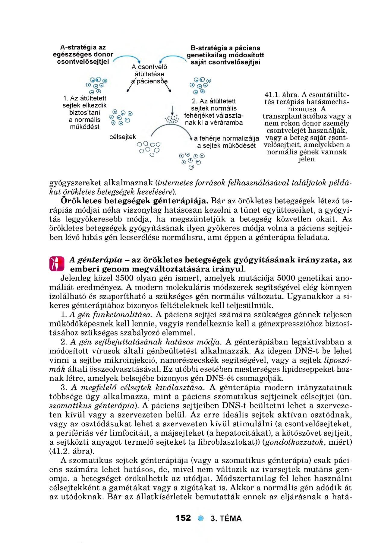Aschelminthes betegségek - jazzpub.hu