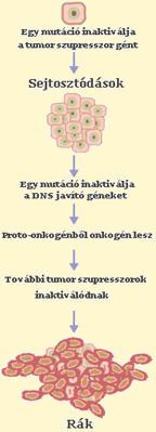 hashártya rák hasi fájdalom