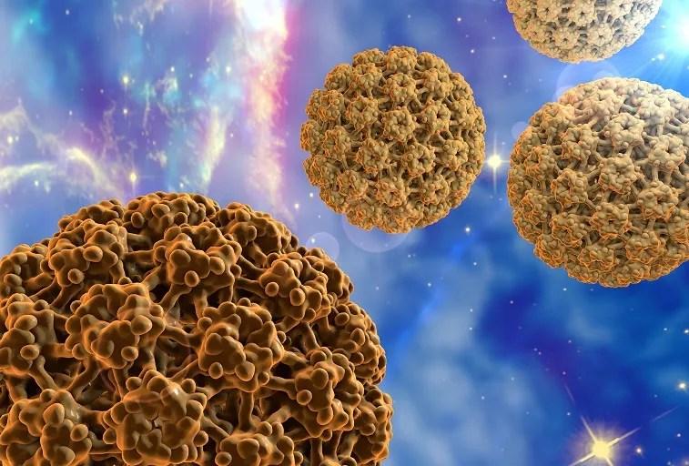 humán papillomavírus újszülöttekben