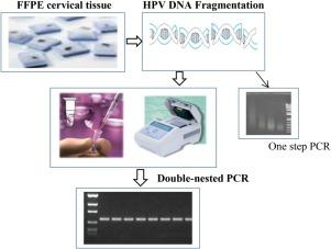 papillomavírus hpv 68 a hpv képes gyógyítani