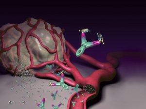 szemölcsök ültetése kriodestrukció után milyen tablettákat kell inni a férgektől