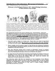 az ascaris felülvizsgálatok kezelése parazita betegségek