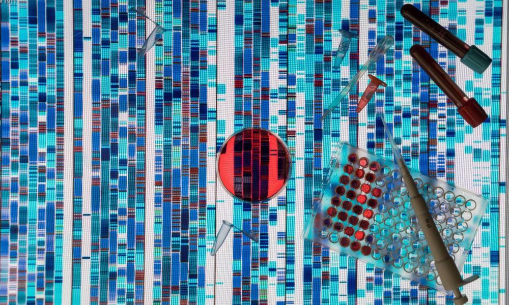 paraziták a tumorban parazita a kezelésből